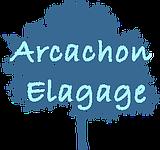 Arcachon Élagage, spécialistes de l'arbre sur le bassin d'Arcachon